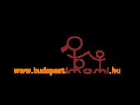 Budapesti szülészetek