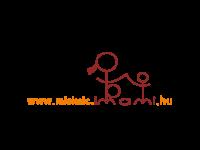 Miskolci és Borsod-Abaúj-Zemplén megyei általános iskolák