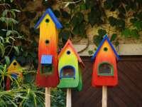 Milyen madáretetőt válasszunk? - inspiráló ötletekkel a döntéshez